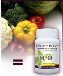 Perfect Plant Mineral Free Sample